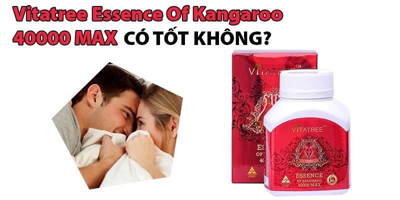 Vitatree Essence Of Kangaroo 40000 Max Có Tốt Không?