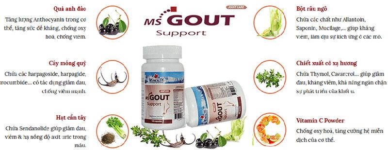 ms gout support có tốt không
